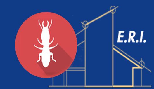 image ERI Termites